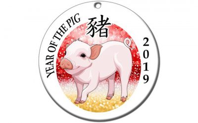 2019: The Year of The Pig