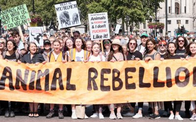 Rebelling for all life with Animal Rebellion