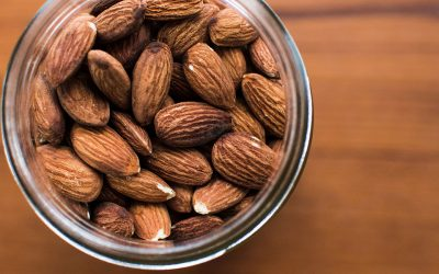Dairy farm shuts down and grows almonds instead