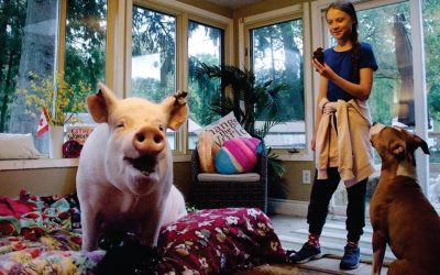 Greta has cupcakes with Esther The Wonderpig