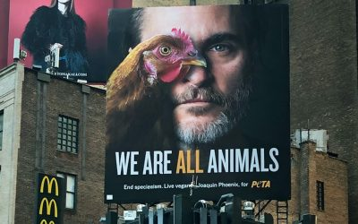 Joaquin Phoenix joins forces with PETA once again