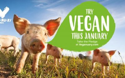 Hollywood actors and high-profile environmentalists back Veganuary's 2020 campaign