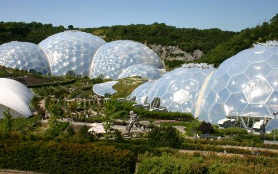 Eden project launches pop-up cafe to help people to choose plant-based options