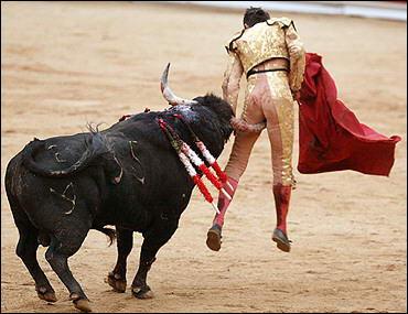 Fears of Coronavirus leads to 21 Bullfighting evens being canceled saving 120 bulls