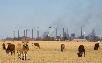 Greenhouse Gas Emissions From Agriculture Much Higher Than We Thought