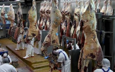 "Author Jonathan Safran Foer Calls On Consumers To Withdraw Support For ""Cruel"" Meat Industry"