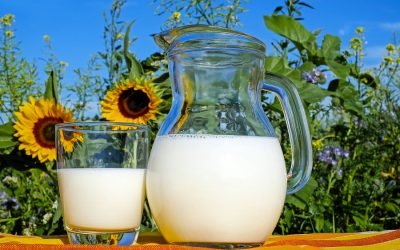 Which plant-based milk has the lowest carbon footprint?