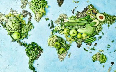 The challenge to get people to eat a plant-based diet to save the planet