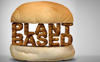 Certification program launched to recognise sustainable, plant-based sources of protein
