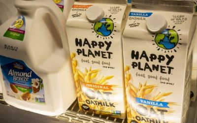 Can plant-based milk keep the momentum?