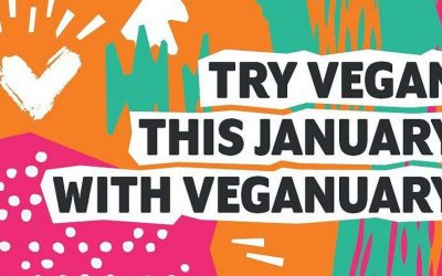 Veganuary campaign has saved more than 100 000 tonnes of CO2