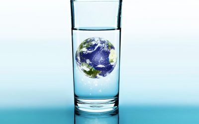 Stop eating meat if you want to save water
