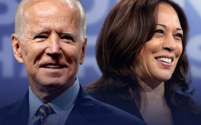 Biden-Harris Administration urged to phase out animal agriculture