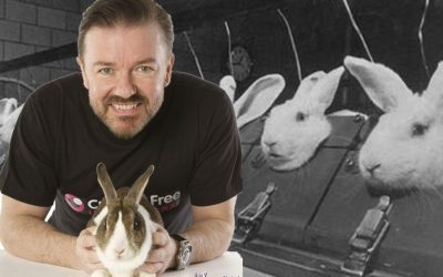 Ricky Gervais blasts plans for rabbit farm where over 30 thousand could be slaughtered anually