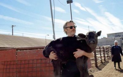 Joaquin Phoenix rescues a cow from a slaughterhouse in new documentary