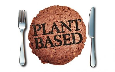 Funding meat alternatives could be the climate solution we have been waiting for