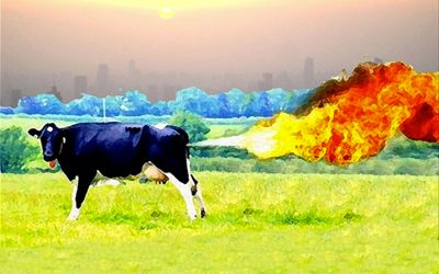 """UN experts demand """"urgent steps"""" be taken to reduce methane emissions"""