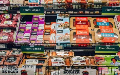 Government should fund sustainable meat alternatives for a sustainable future
