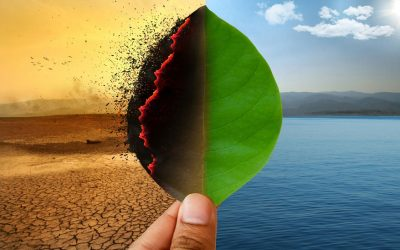 Global alliance could be game changer in fighting climate change